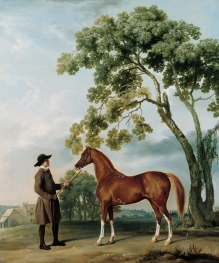 George Stubbs Lord Grosvenors Arabian Stallion with a Groom c. 17