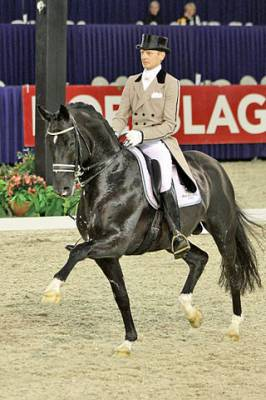 The Olympic Disciplines: Part I - Dressage