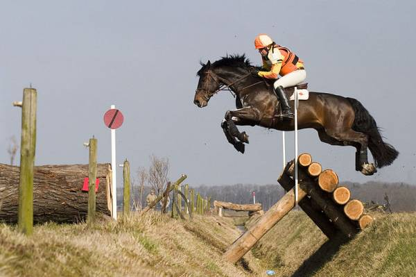 The Olympic Disciplines: Part III - Eventing